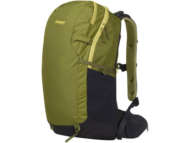 Bergans Rondane V6 30 Backpack Men, dark green oasis